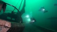 Oceanex 17