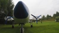 Piper 005